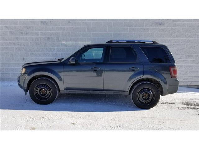 2009 Ford Escape Limited (Stk: 17372A) in Kingston - Image 1 of 28