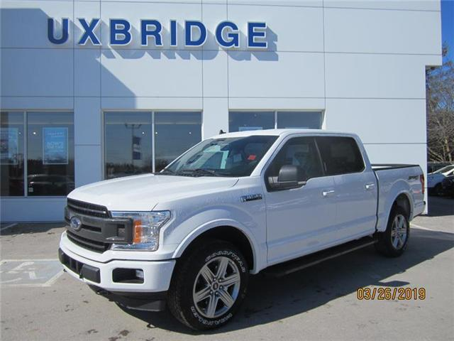 2019 Ford F-150 XLT (Stk: IF18831) in Uxbridge - Image 1 of 4