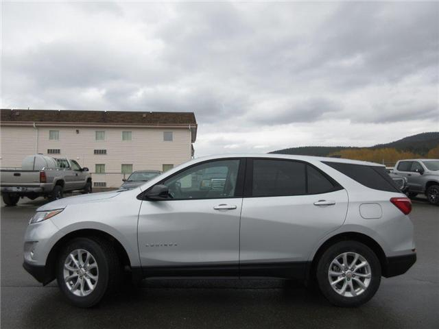 2019 Chevrolet Equinox LS (Stk: 1X50844) in Cranbrook - Image 2 of 17