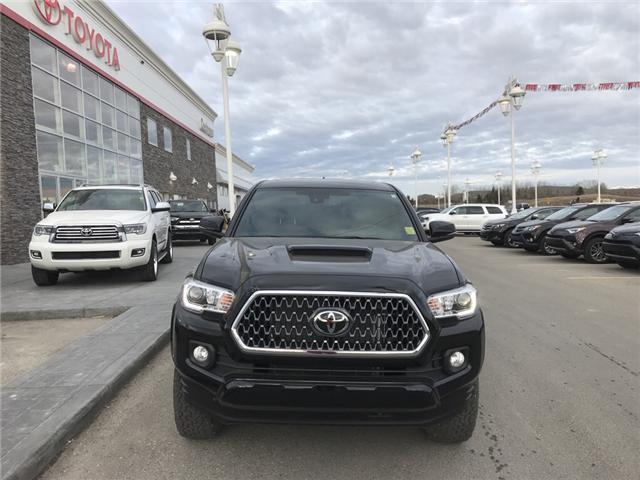 2019 Toyota Tacoma TRD Sport (Stk: 190097) in Cochrane - Image 8 of 13