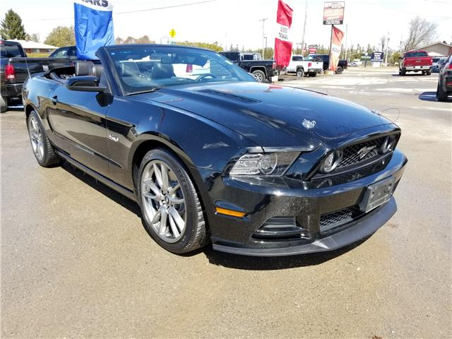 2014 Ford Mustang GT (Stk: ) in Kemptville - Image 2 of 26