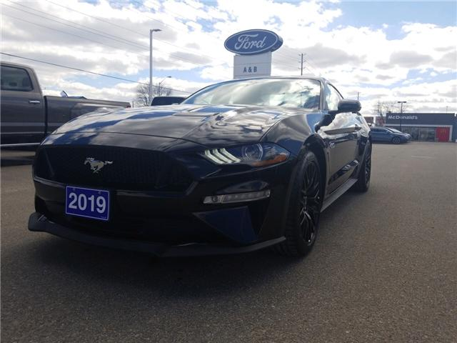 2019 Ford Mustang  (Stk: 19196) in Perth - Image 1 of 14