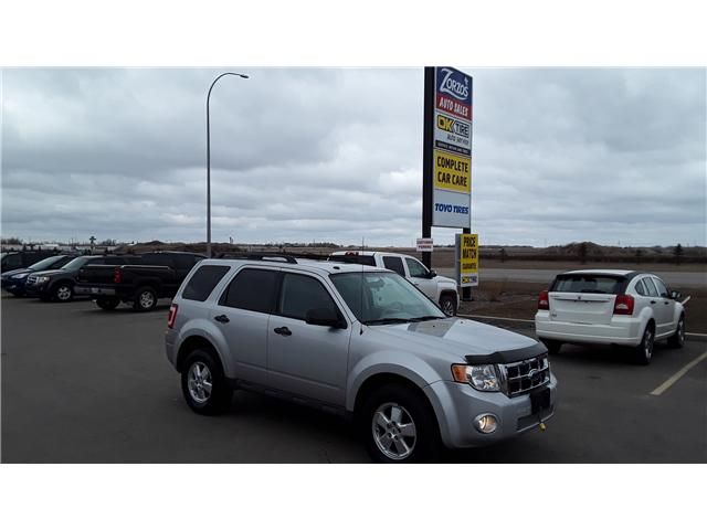 2009 Ford Escape XLT Automatic (Stk: P430) in Brandon - Image 2 of 14