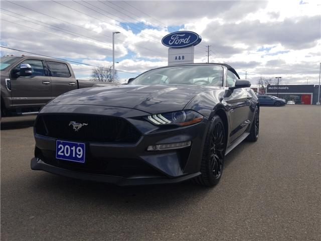 2019 Ford Mustang GT Premium (Stk: 19197) in Perth - Image 1 of 9