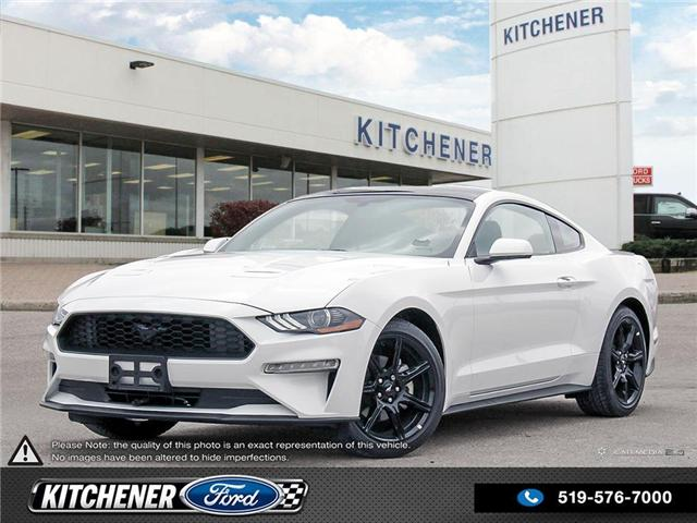 2019 Ford Mustang EcoBoost (Stk: 9M1530) in Kitchener - Image 1 of 27
