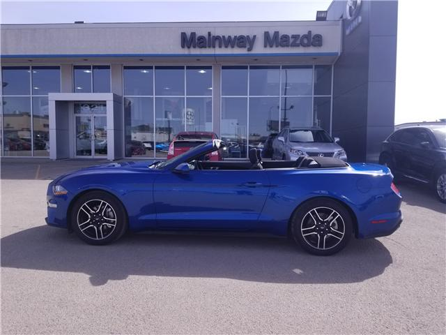 2018 Ford Mustang EcoBoost (Stk: P1560) in Saskatoon - Image 1 of 19