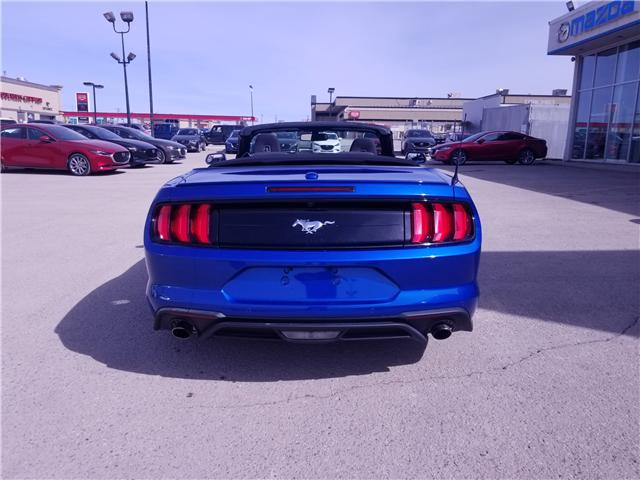 2018 Ford Mustang EcoBoost (Stk: P1560) in Saskatoon - Image 3 of 19