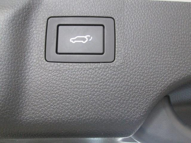 2019 Hyundai Santa Fe XL Preferred (Stk: M2622) in Gloucester - Image 14 of 20