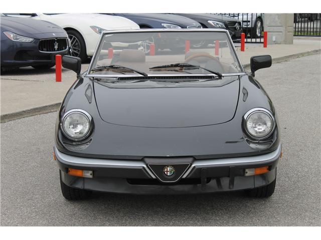 1984 Alfa Romeo Spider Veloce  (Stk: 16291) in Toronto - Image 2 of 27