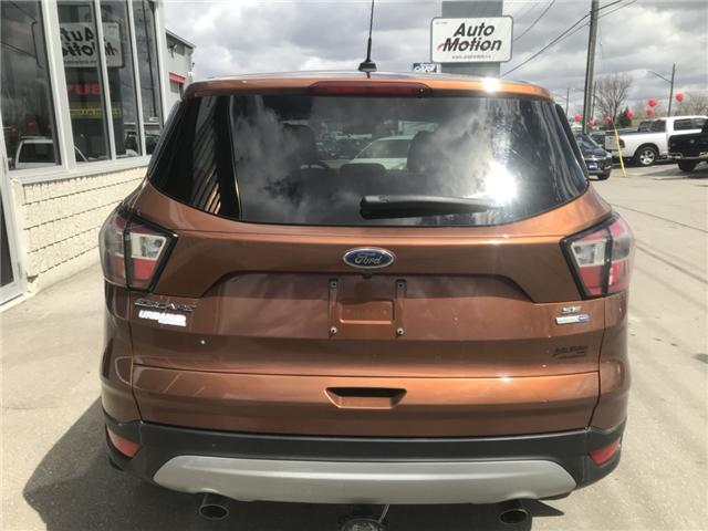 2017 Ford Escape SE (Stk: 19348) in Chatham - Image 5 of 19