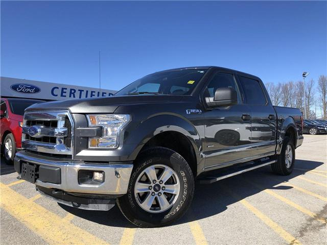 2016 Ford F-150 XLT (Stk: FP19177A) in Barrie - Image 1 of 20