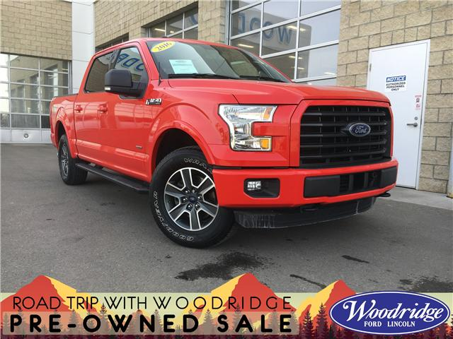 2016 Ford F-150 XLT (Stk: KK-105A) in Calgary - Image 1 of 20