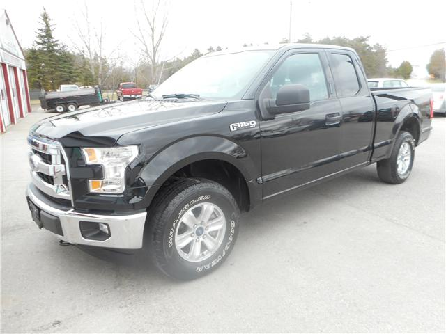 2017 Ford F-150 XLT (Stk: NC 3730) in Cameron - Image 1 of 11