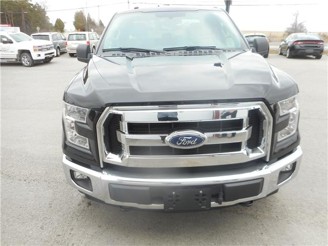 2017 Ford F-150 XLT (Stk: NC 3730) in Cameron - Image 2 of 11