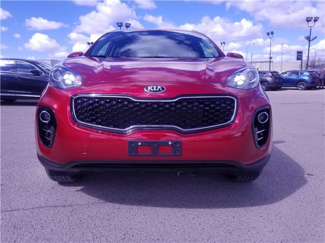 2019 Kia Sportage EX (Stk: P1551) in Saskatoon - Image 7 of 26