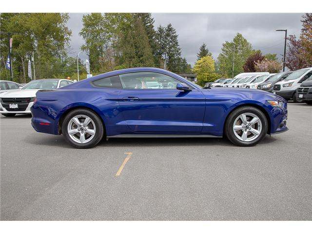 2015 Ford Mustang V6 (Stk: 8FU0202A) in Vancouver - Image 8 of 24