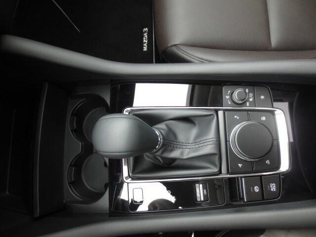 2019 Mazda Mazda3 GT (Stk: M19041) in Steinbach - Image 29 of 36