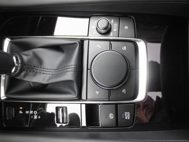2019 Mazda Mazda3 GT (Stk: M19041) in Steinbach - Image 30 of 36