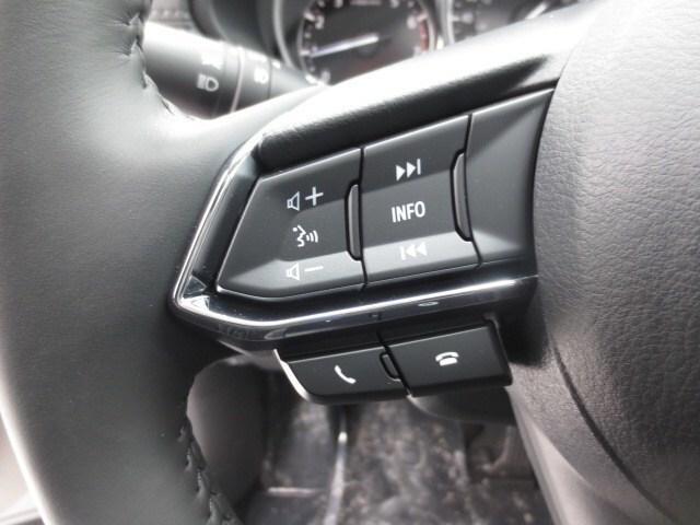 2019 Mazda CX-5 GT w/Turbo (Stk: M19044) in Steinbach - Image 25 of 33