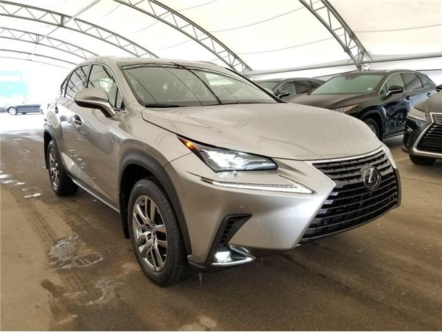 2019 Lexus NX 300 Base (Stk: LU0243) in Calgary - Image 1 of 5