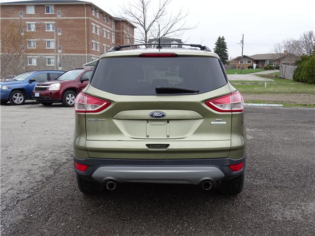 2013 Ford Escape SE (Stk: ) in Oshawa - Image 4 of 14