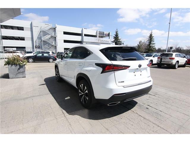2019 Lexus NX 300 Base (Stk: 190225) in Calgary - Image 5 of 17
