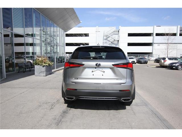 2019 Lexus NX 300 Base (Stk: 190295) in Calgary - Image 4 of 13