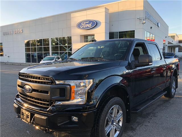 2018 Ford F-150 XLT (Stk: RP19164) in Vancouver - Image 1 of 24