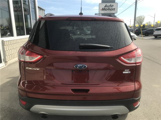 2016 Ford Escape SE (Stk: 19519) in Chatham - Image 6 of 21