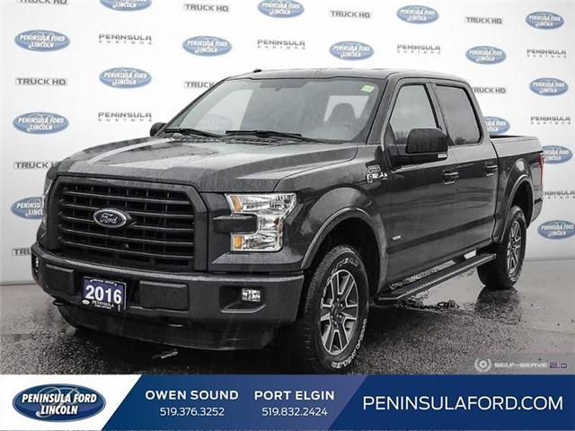 2016 Ford F-150 XLT (Stk: 19FE79A) in Owen Sound - Image 1 of 24