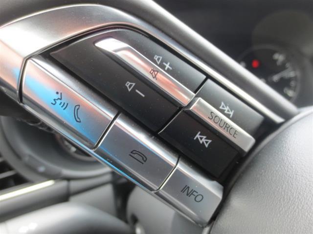 2019 Mazda Mazda3 Sport GT (Stk: M19093) in Steinbach - Image 14 of 22