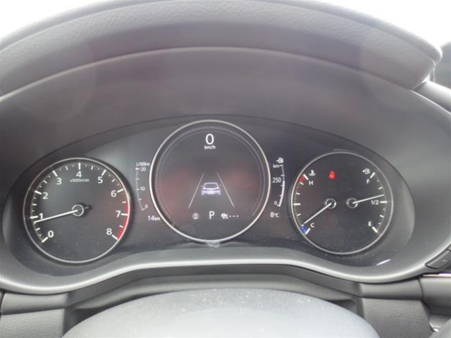 2019 Mazda Mazda3 Sport GT (Stk: M19093) in Steinbach - Image 15 of 22