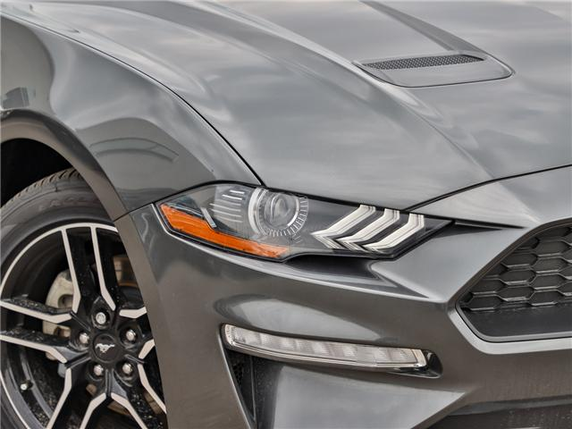 2019 Ford Mustang EcoBoost (Stk: 190315) in Hamilton - Image 8 of 21