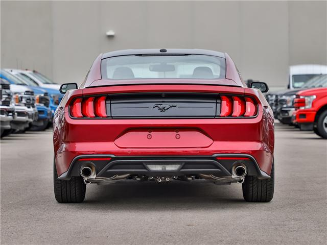 2019 Ford Mustang EcoBoost (Stk: 190343) in Hamilton - Image 3 of 26