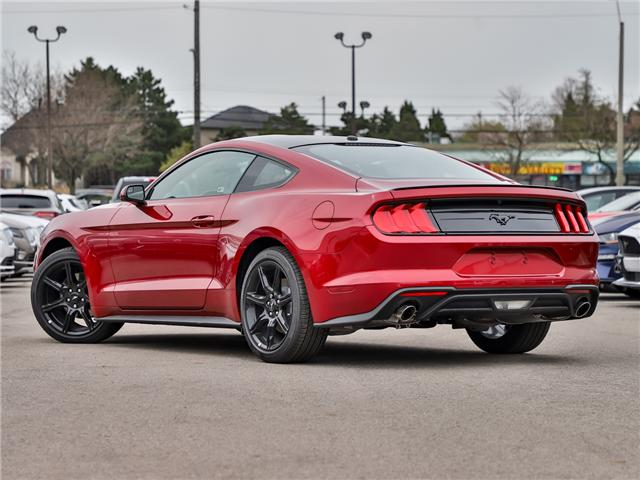 2019 Ford Mustang EcoBoost (Stk: 190343) in Hamilton - Image 2 of 26
