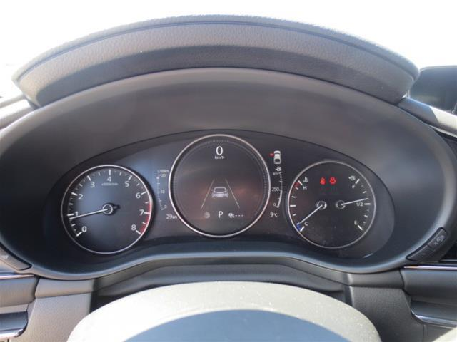 2019 Mazda Mazda3 Sport GS (Stk: M19083) in Steinbach - Image 17 of 22