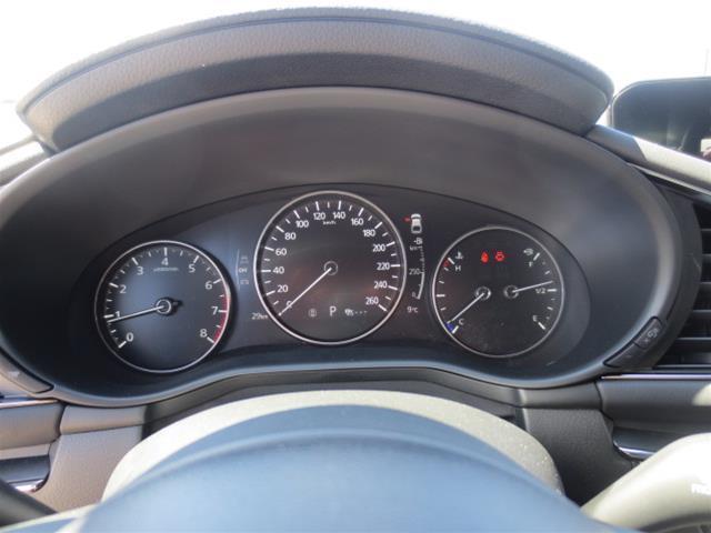 2019 Mazda Mazda3 Sport GS (Stk: M19083) in Steinbach - Image 18 of 22