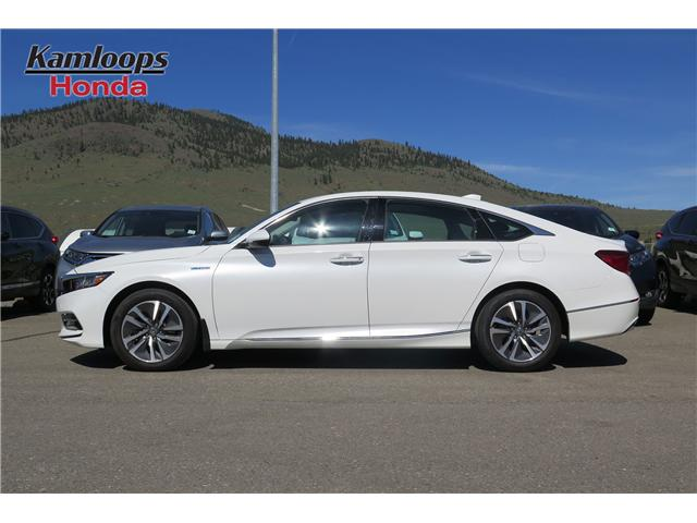 2019 Honda Accord Hybrid Touring (Stk: N14229) in Kamloops - Image 3 of 19