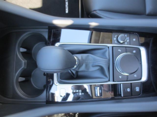 2019 Mazda Mazda3 GS (Stk: M19072) in Steinbach - Image 17 of 22
