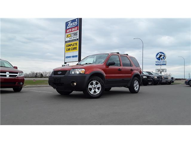 2006 Ford Escape XLT (Stk: P460) in Brandon - Image 1 of 16