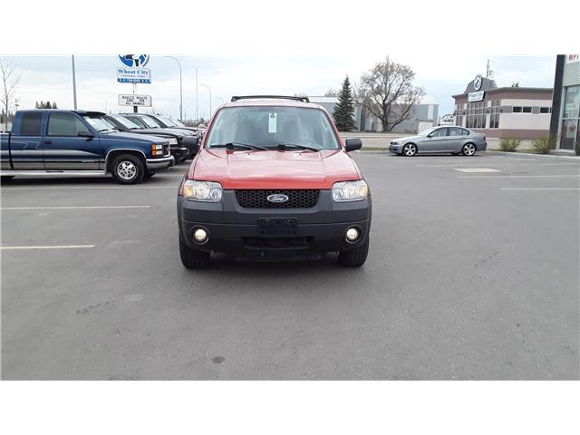 2006 Ford Escape XLT (Stk: P460) in Brandon - Image 2 of 16