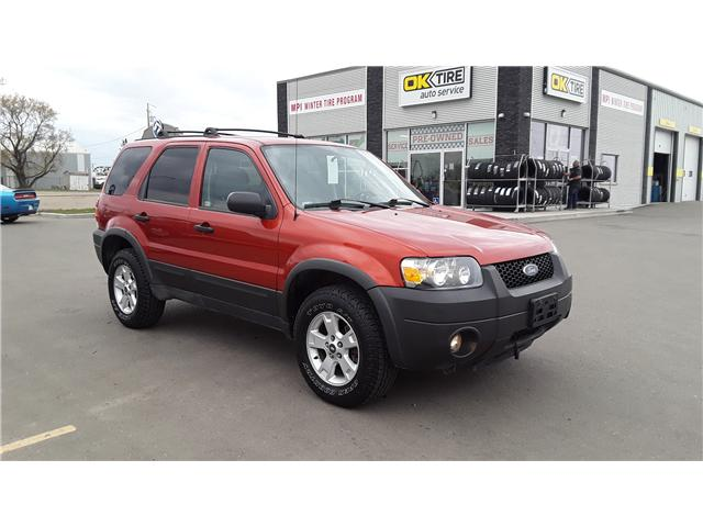 2006 Ford Escape XLT (Stk: P460) in Brandon - Image 3 of 16