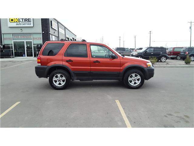 2006 Ford Escape XLT (Stk: P460) in Brandon - Image 4 of 16