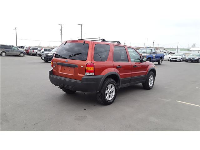 2006 Ford Escape XLT (Stk: P460) in Brandon - Image 5 of 16