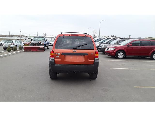 2006 Ford Escape XLT (Stk: P460) in Brandon - Image 6 of 16