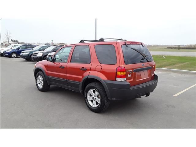 2006 Ford Escape XLT (Stk: P460) in Brandon - Image 9 of 16