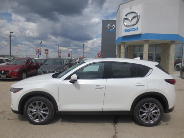 2019 Mazda CX-5 GT (Stk: M19110) in Steinbach - Image 6 of 22