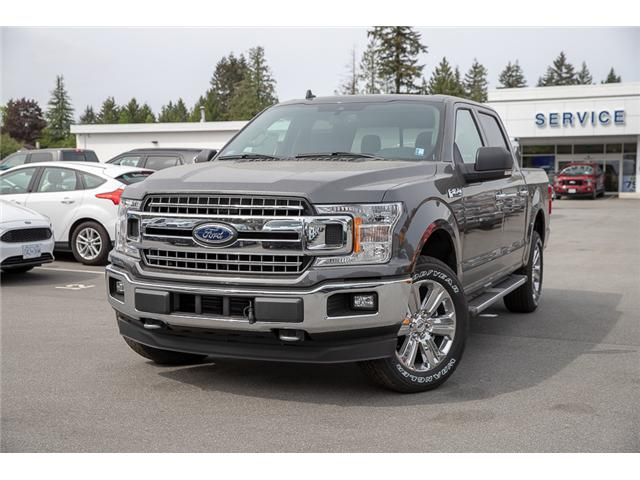 2019 Ford F-150 XLT (Stk: 9F11119) in Vancouver - Image 3 of 30