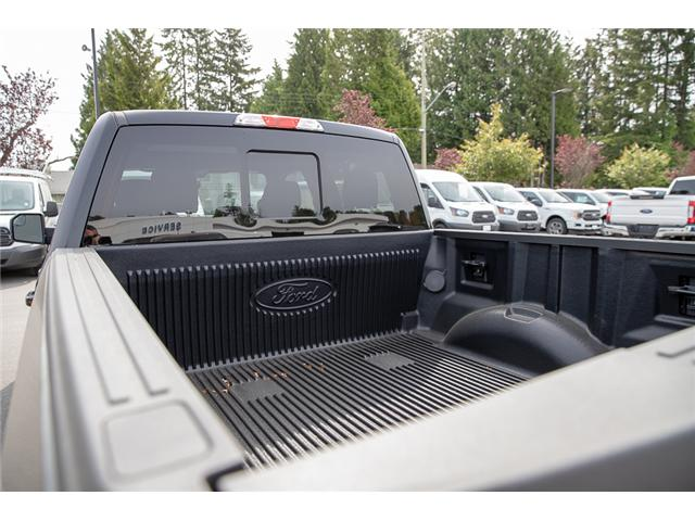 2019 Ford F-150 XLT (Stk: 9F11111) in Vancouver - Image 13 of 29