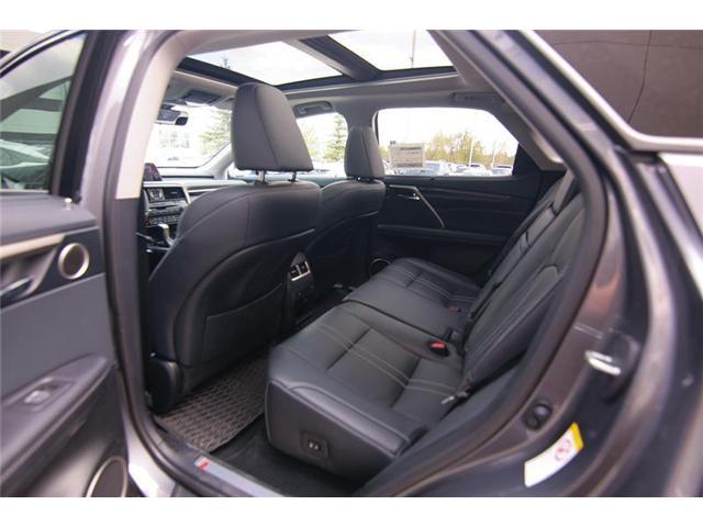 2019 Lexus RX 350 Base (Stk: 190103) in Calgary - Image 12 of 14